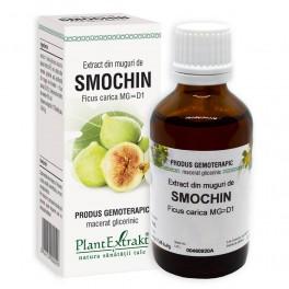 Extract din muguri de SMOCHIN 50ml Plantr Extrakt