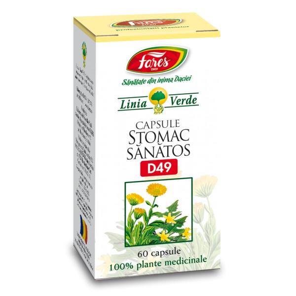 stomac sanatos dacia plant)