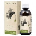 DP Tinctura concentrata Elixir fructe de soc 200ml