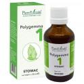 Polygemma 1 stomac 50 ml - Plant Extrakt TM