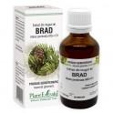 Extract din muguri de BRAD 50ml Plant Extrakt