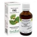 Extract din muguri de FAG 50ml Plant Extrakt