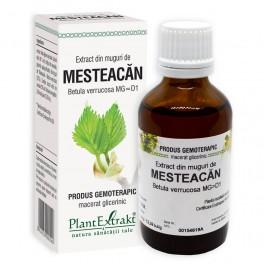 Extract din muguri de MESTEACĂN 50ml Plant Extrakt