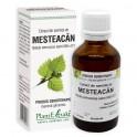 Extract din seminţe de MESTEACĂN 50ml Plant Extrakt